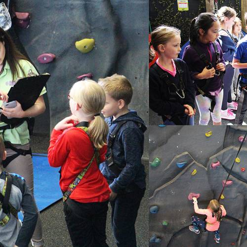 RockReef provides solutions for essential Key stage 1 & 2 school curriculum activities