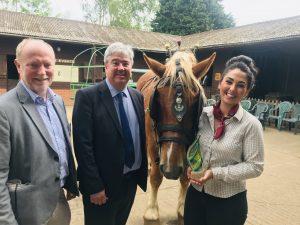 Dorset Heavy Horse Farm Centre host Dorset Tourism Awards sponsors and former winners