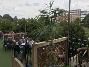 The Urban Garden in the heart of Bournemouth